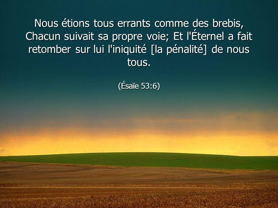Nous étions tous errants comme des brebis, Chacun suivait sa propre voie; Et l Éternel a fait retomber sur lui l iniquité [la pénalité] de nous tous.